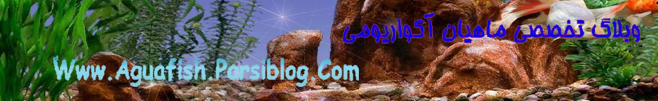 ماهیان آکواریمی - به روز رسانی :  11:36 ع 89/4/24 عنوان آخرین نوشته : آهنگ بی تو از سیاوش قمیشی !!