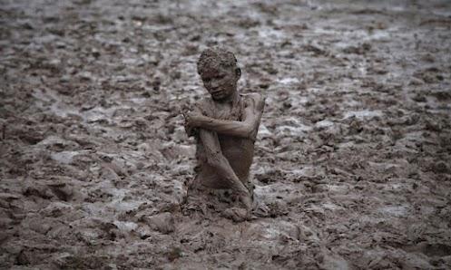 برداشت فرزند صالح از زمین ناپاک و مورد دار غیر ممکنه !