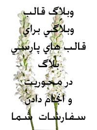 وبلاگ قالب - به روز رسانی :  11:44 ص 87/9/16 عنوان آخرین نوشته : قالب عید غدیر ( پارسی بلاگ) + هدیه