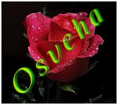 السلام علیکم یا اهل بیت النبوه - به روز رسانی :  1:21 ص 96/9/29 عنوان آخرین نوشته : اگر خدا را دوست داری...