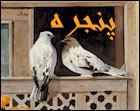 کوه کن - به روز رسانی :  1:48 ع 86/5/29 عنوان آخرین نوشته : بوی خوش رمضان
