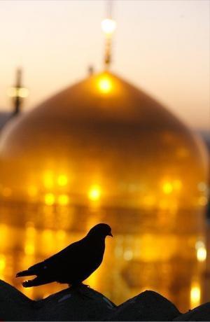 السلام علیک یا علی ابن موسی الرضا المرتضی علیه السلام
