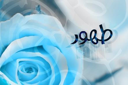 طهور - به روز رسانی :  1:47 ع 92/2/29 عنوان آخرین نوشته : اعتکافیاش صلوات