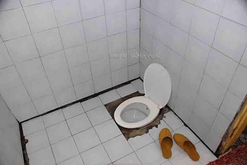انسان توالت متحرک