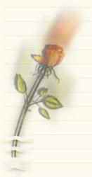 اهل همین نزدیکیا ... - به روز رسانی :  8:43 ص 95/7/11 عنوان آخرین نوشته : سلام