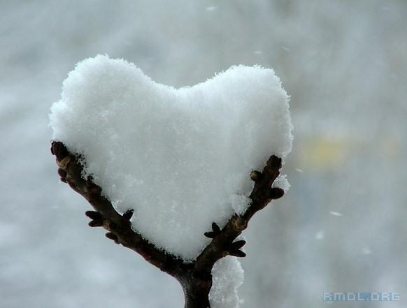 قلبی برفی با گرمایی خدایی