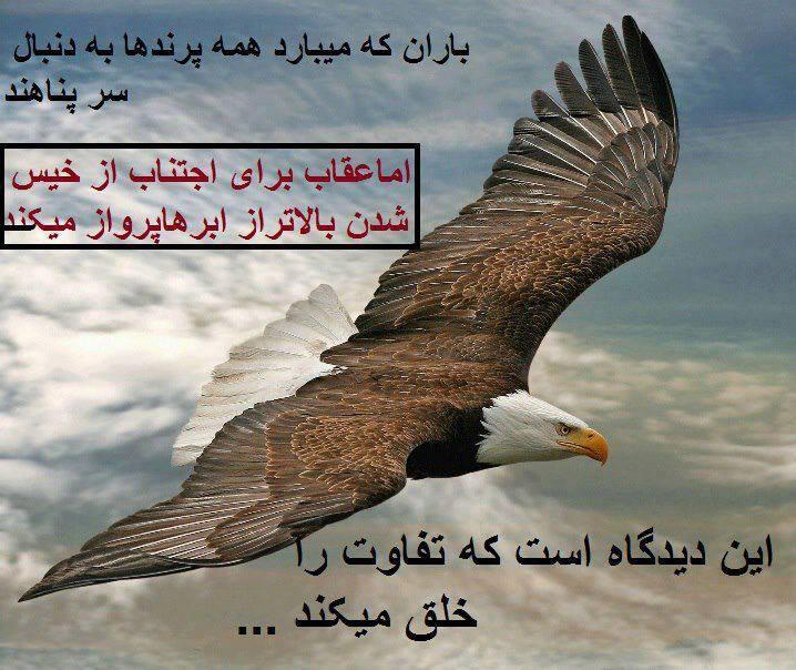 http://www.parsiblog.com/PhotoAlbum/behesht1389/1cb78863ea20672c97ed47462084b4a8.jpg