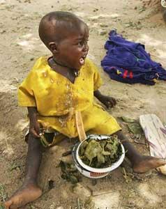 غذای نذری چقدر خوشمزه تر از بقیه غذاهاست؟!!!