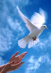 عروج - به روز رسانی :  9:22 ع 96/5/26 عنوان آخرین نوشته : بسم الله الرحمن الرحیم