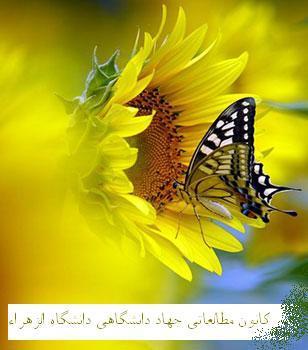 کانون مطالعاتی توانگری (دانشجویان دانشگاه الزهرا) - به روز رسانی :  9:24 ع 91/2/31 عنوان آخرین نوشته : معنای زندگی از نگاه استاد حمید عجمی