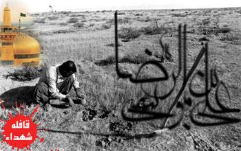 شهید امام رضا(ع) - قافله شهداء