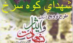 - به روز رسانی :  11:34 ع 95/6/18 عنوان آخرین نوشته : شهید منا دکتر حاج جواد نمازی مکی